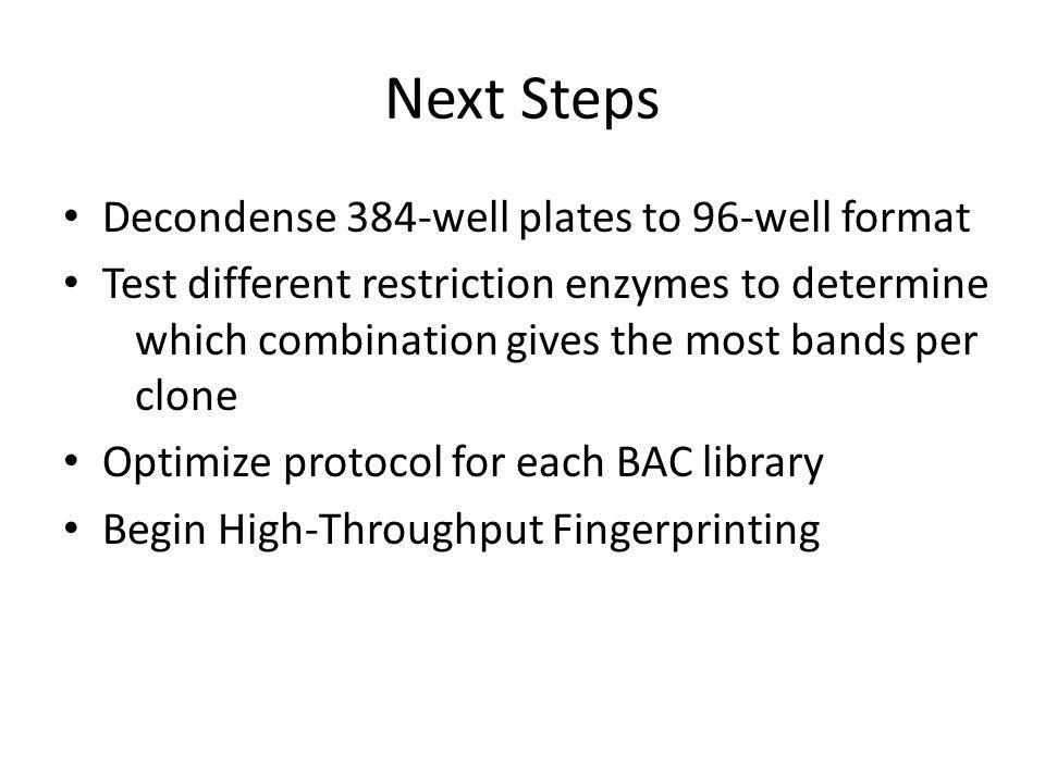 Next Steps Decondense 384-well plates to 96-well format Test different restriction enzymes to determine which combination gives the most bands per clo