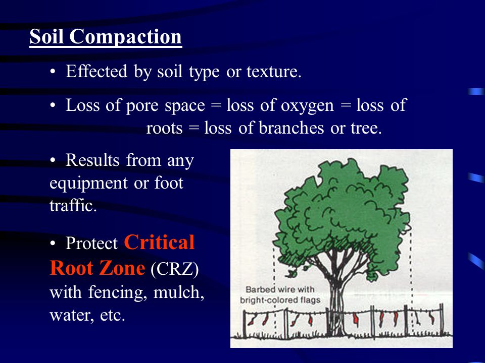 Soil Compaction Effected by soil type or texture.
