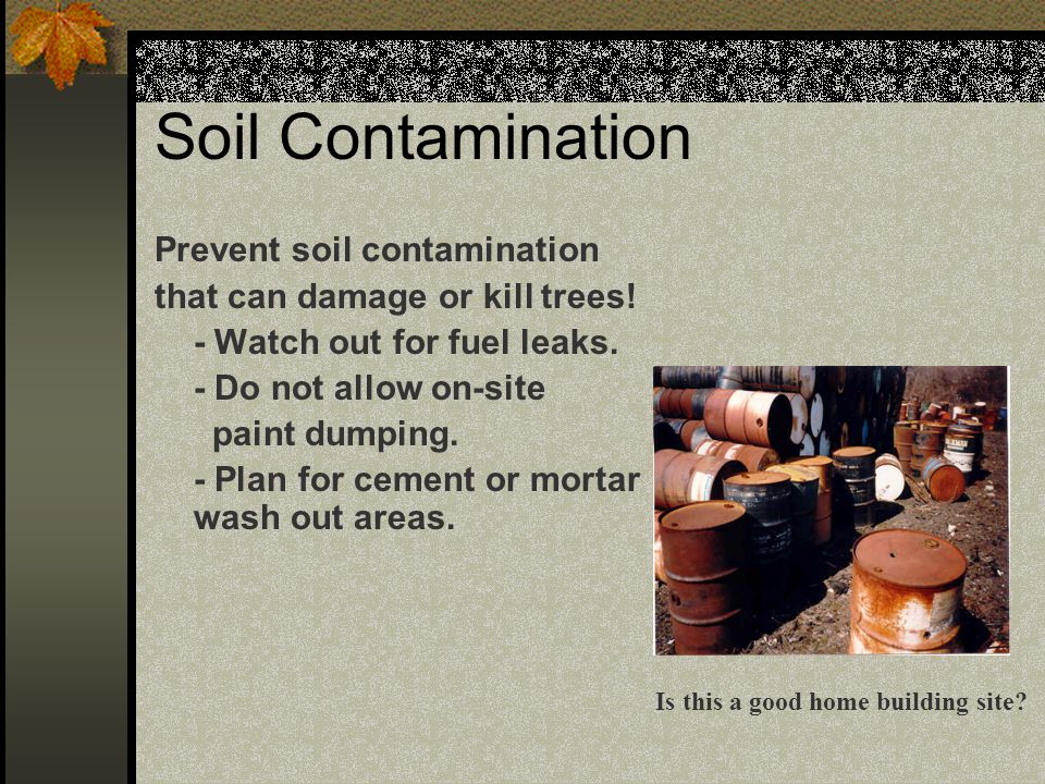 Soil Contamination Prevent soil contamination that can damage or kill trees! - Watch out for fuel leaks. - Do not allow on-site paint dumping. - Plan
