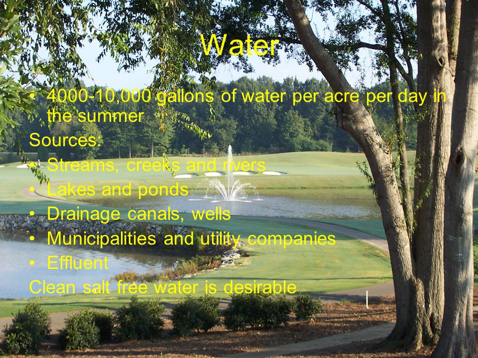 Water 4000-10,000 gallons of water per acre per day in the summer Sources: Streams, creeks and rivers Lakes and ponds Drainage canals, wells Municipalities and utility companies Effluent Clean salt free water is desirable