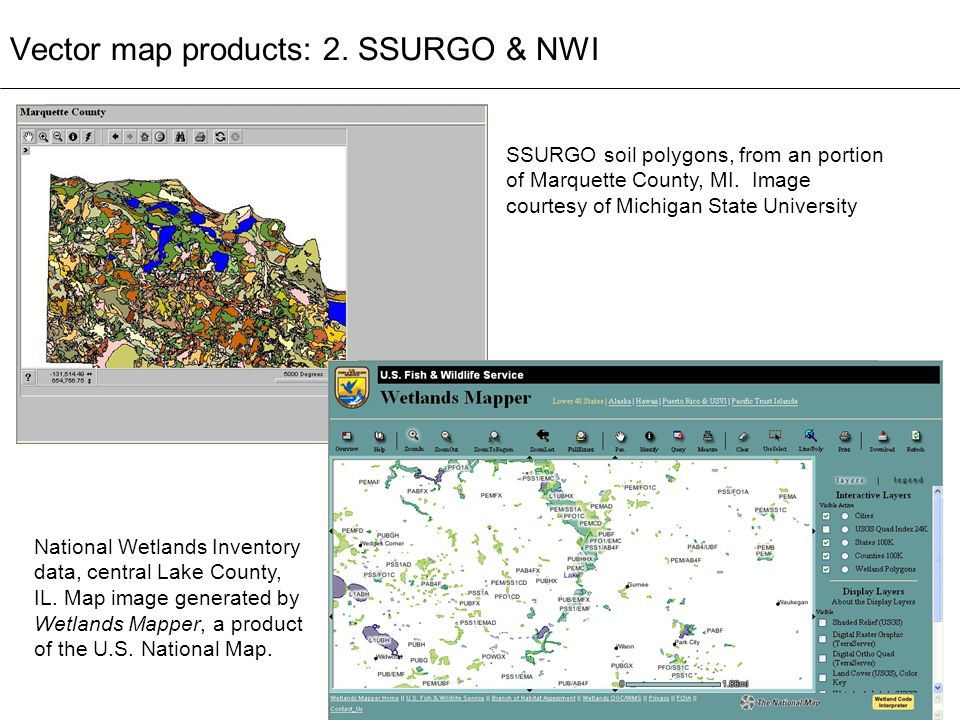 Vector map products: 2. SSURGO & NWI SSURGO soil polygons, from an portion of Marquette County, MI. Image courtesy of Michigan State University Nation