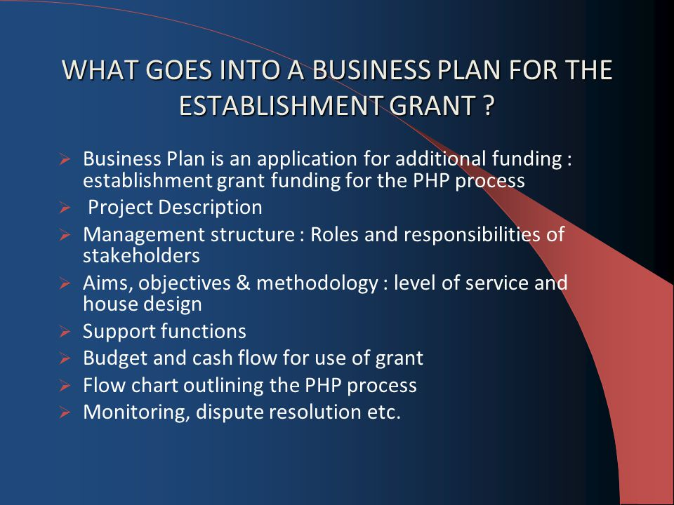 WHAT GOES INTO A BUSINESS PLAN FOR THE ESTABLISHMENT GRANT .