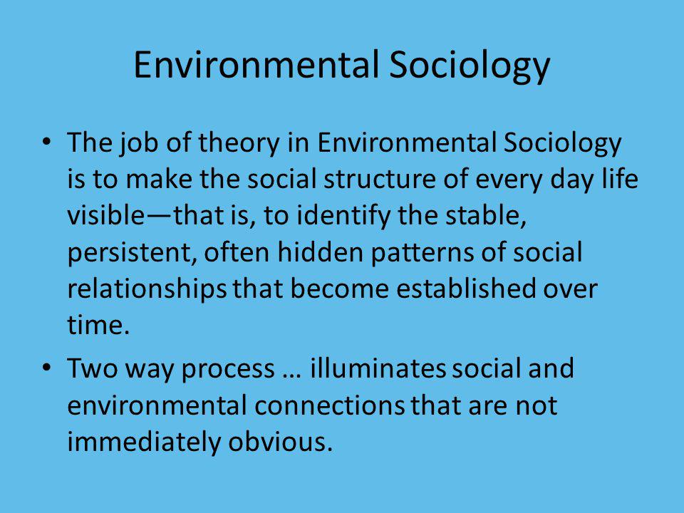 Environmental Sociology The job of theory in Environmental Sociology is to make the social structure of every day life visiblethat is, to identify the stable, persistent, often hidden patterns of social relationships that become established over time.