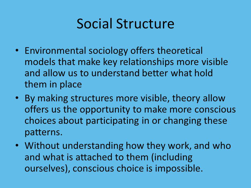 Social Structure Environmental sociology offers theoretical models that make key relationships more visible and allow us to understand better what hol