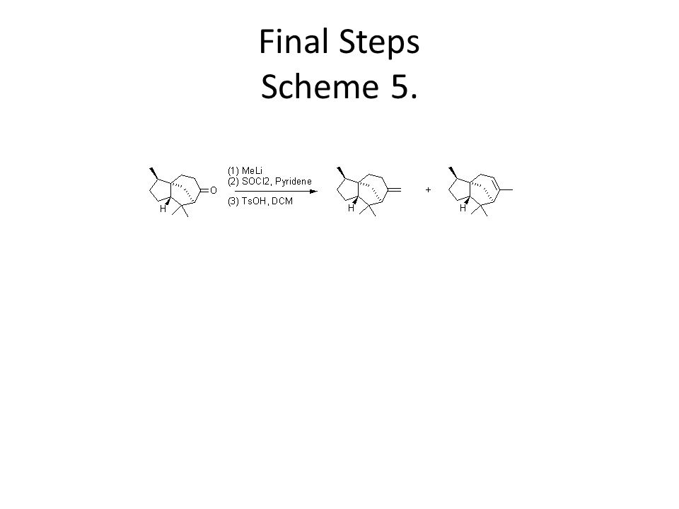Final Steps Scheme 5.