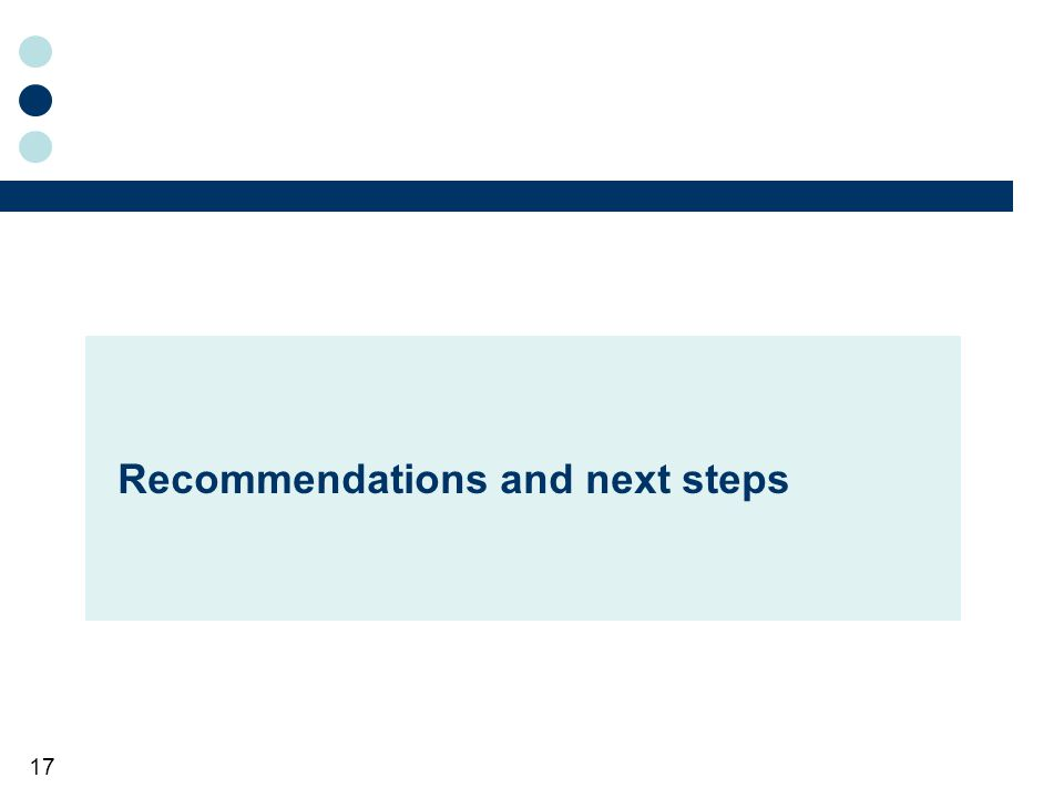 17 Recommendations and next steps