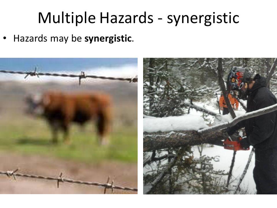 Multiple Hazards - synergistic Hazards may be synergistic.
