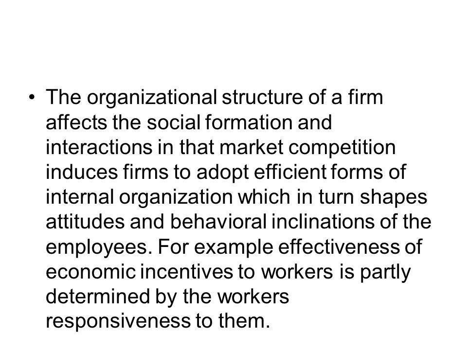 The organizational structure of a firm affects the social formation and interactions in that market competition induces firms to adopt efficient forms
