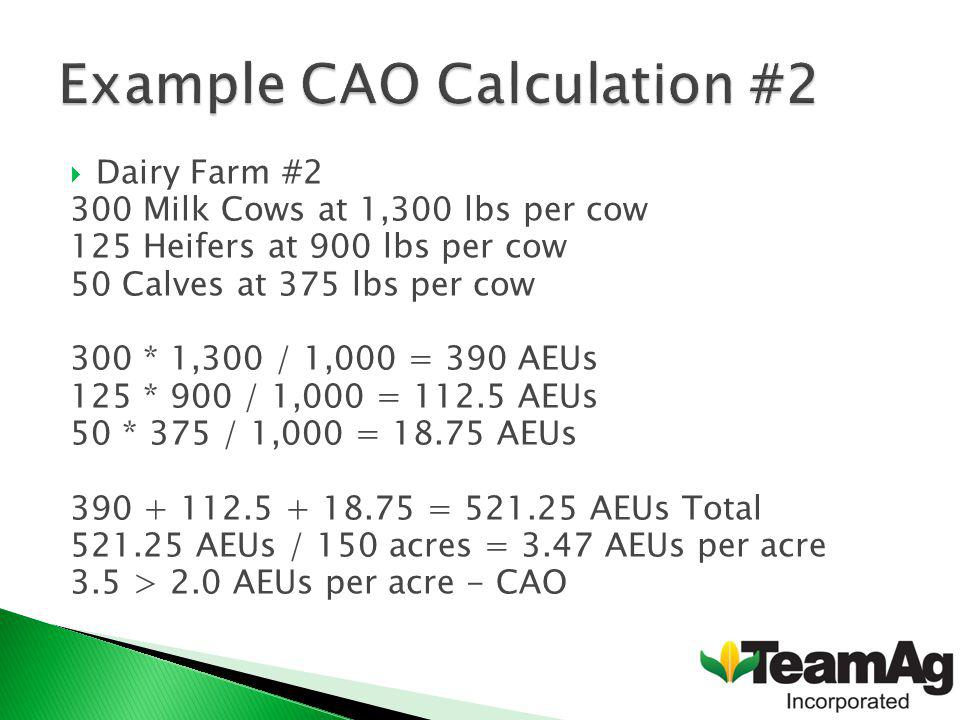 Dairy Farm #2 300 Milk Cows at 1,300 lbs per cow 125 Heifers at 900 lbs per cow 50 Calves at 375 lbs per cow 300 * 1,300 / 1,000 = 390 AEUs 125 * 900 / 1,000 = 112.5 AEUs 50 * 375 / 1,000 = 18.75 AEUs 390 + 112.5 + 18.75 = 521.25 AEUs Total 521.25 AEUs / 150 acres = 3.47 AEUs per acre 3.5 > 2.0 AEUs per acre - CAO