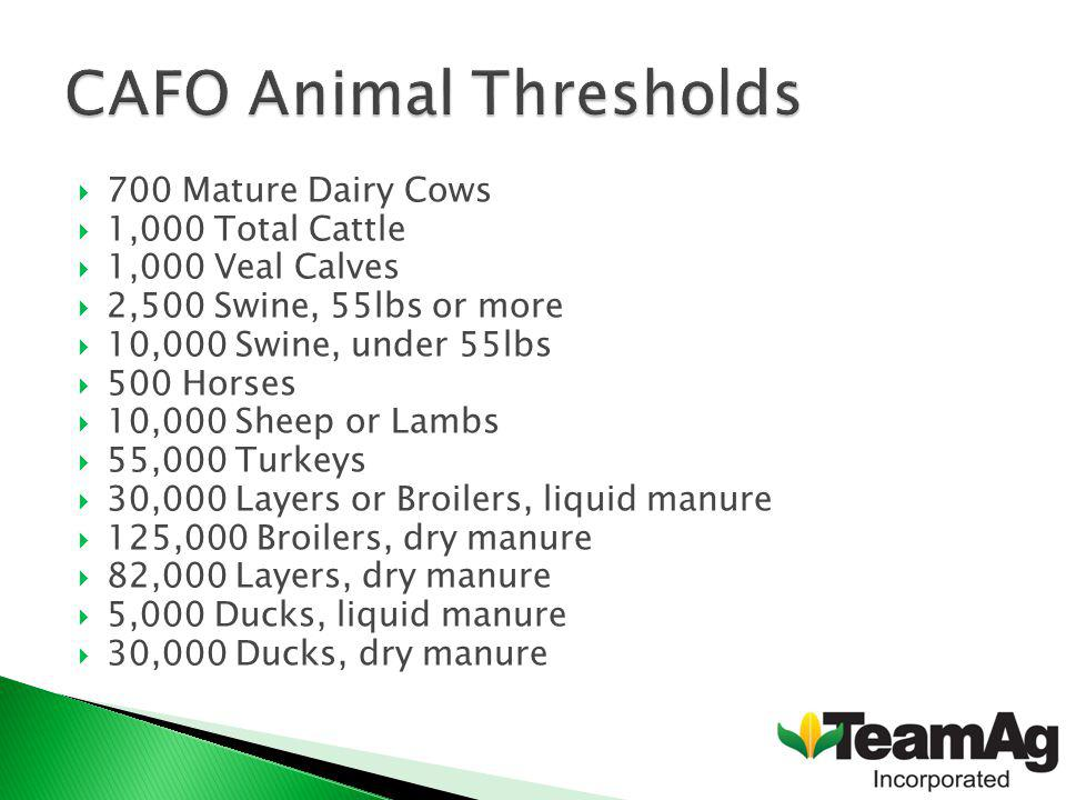 700 Mature Dairy Cows 1,000 Total Cattle 1,000 Veal Calves 2,500 Swine, 55lbs or more 10,000 Swine, under 55lbs 500 Horses 10,000 Sheep or Lambs 55,000 Turkeys 30,000 Layers or Broilers, liquid manure 125,000 Broilers, dry manure 82,000 Layers, dry manure 5,000 Ducks, liquid manure 30,000 Ducks, dry manure