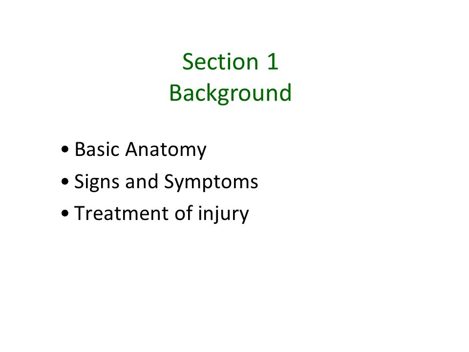 Section 1 Background Basic Anatomy Signs and Symptoms Treatment of injury