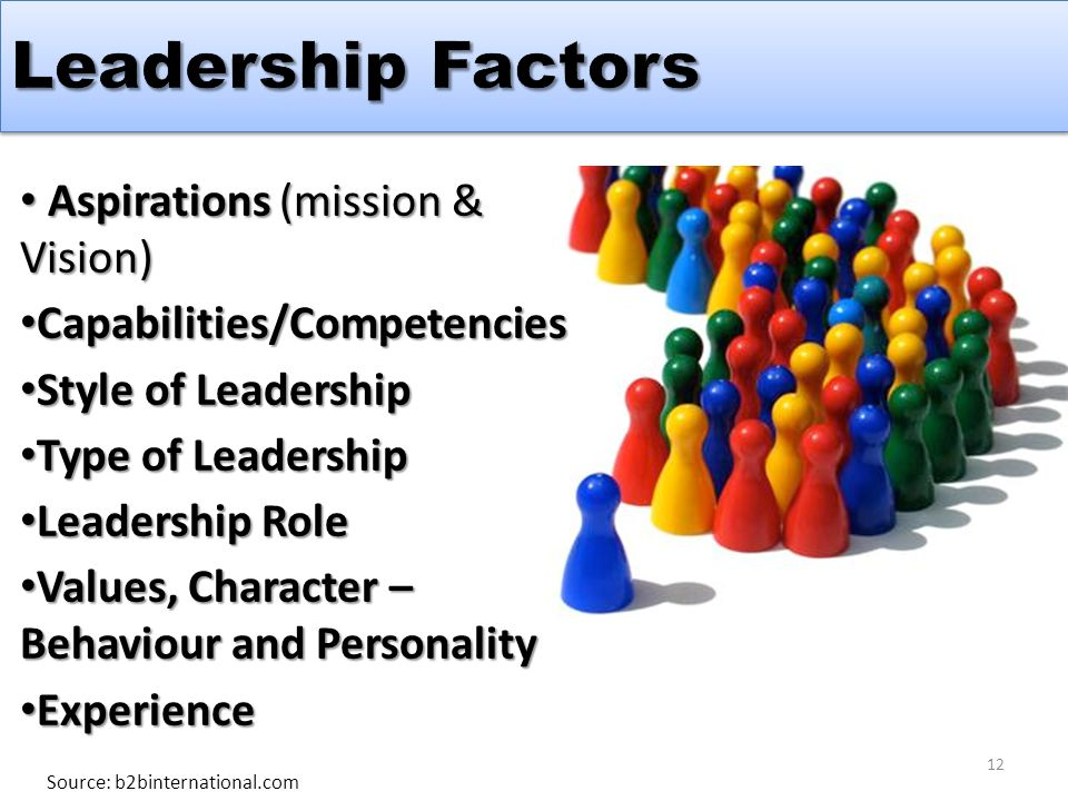 Aspirations (mission & Vision) Aspirations (mission & Vision) Capabilities/Competencies Capabilities/Competencies Style of Leadership Style of Leadership Type of Leadership Type of Leadership Leadership Role Leadership Role Values, Character – Behaviour and Personality Values, Character – Behaviour and Personality Experience Experience Source: b2binternational.com 12