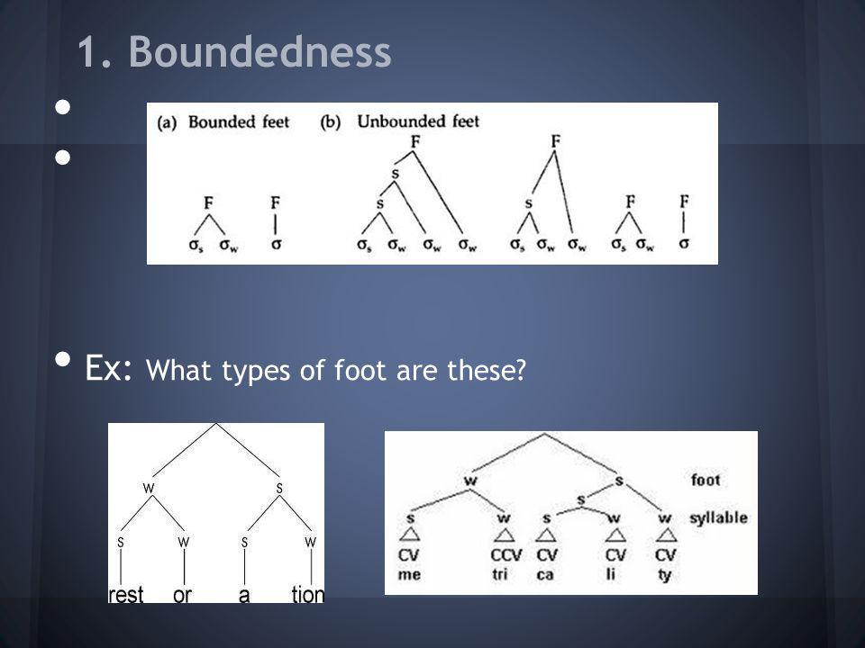 1. Boundedness Ex: What types of foot are these?