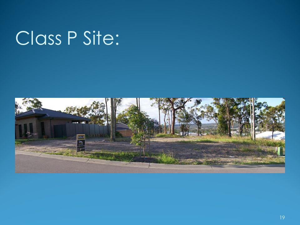 Class P Site: 19
