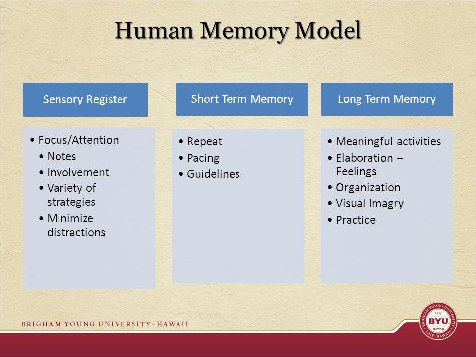 Human Memory Model Sensory Register Focus/Attention Notes Involvement Variety of strategies Minimize distractions Short Term Memory Repeat Pacing Guidelines Long Term Memory Meaningful activities Elaboration – Feelings Organization Visual Imagry Practice