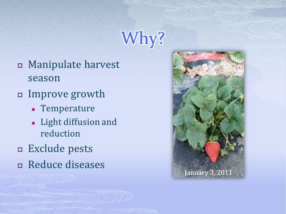 Manipulate harvest season Improve growth Temperature Light diffusion and reduction Exclude pests Reduce diseases January 3, 2011