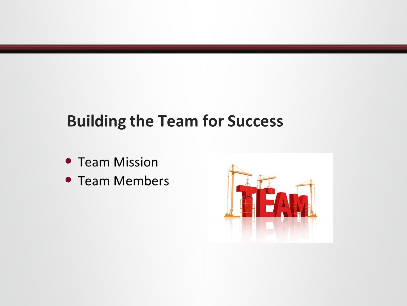 Building the Team for Success Team Mission Team Members