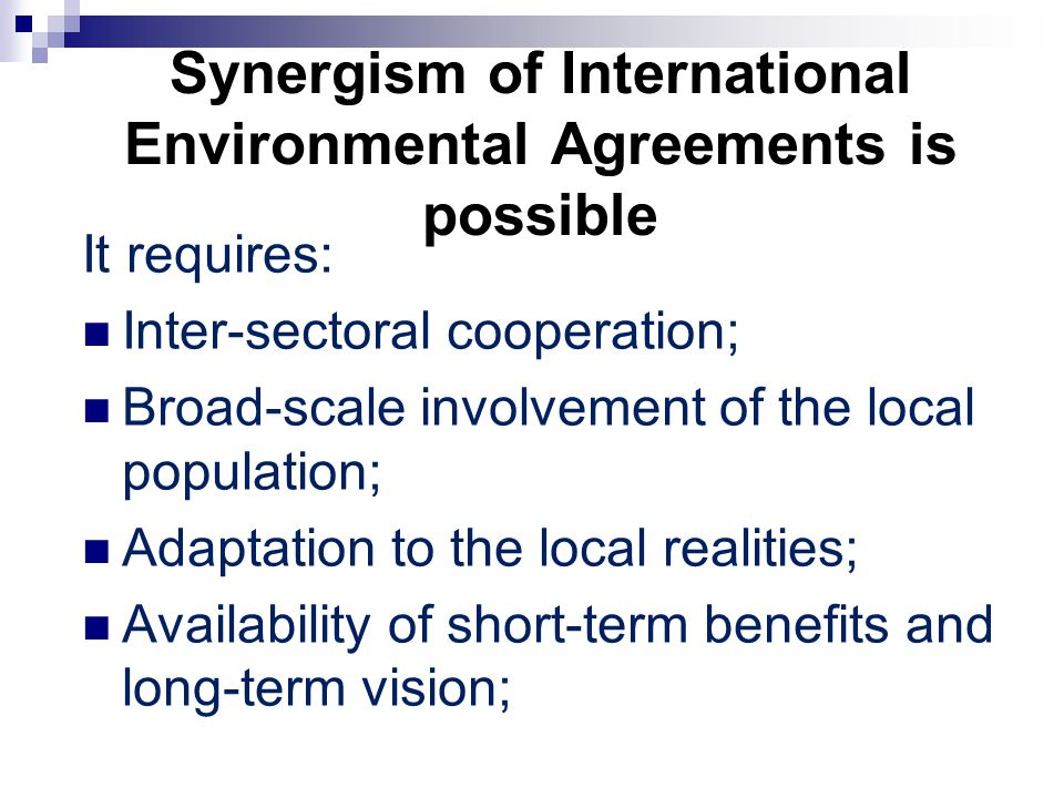 Synergism of International Environmental Agreements is possible It requires: Inter-sectoral cooperation; Broad-scale involvement of the local population; Adaptation to the local realities; Availability of short-term benefits and long-term vision;