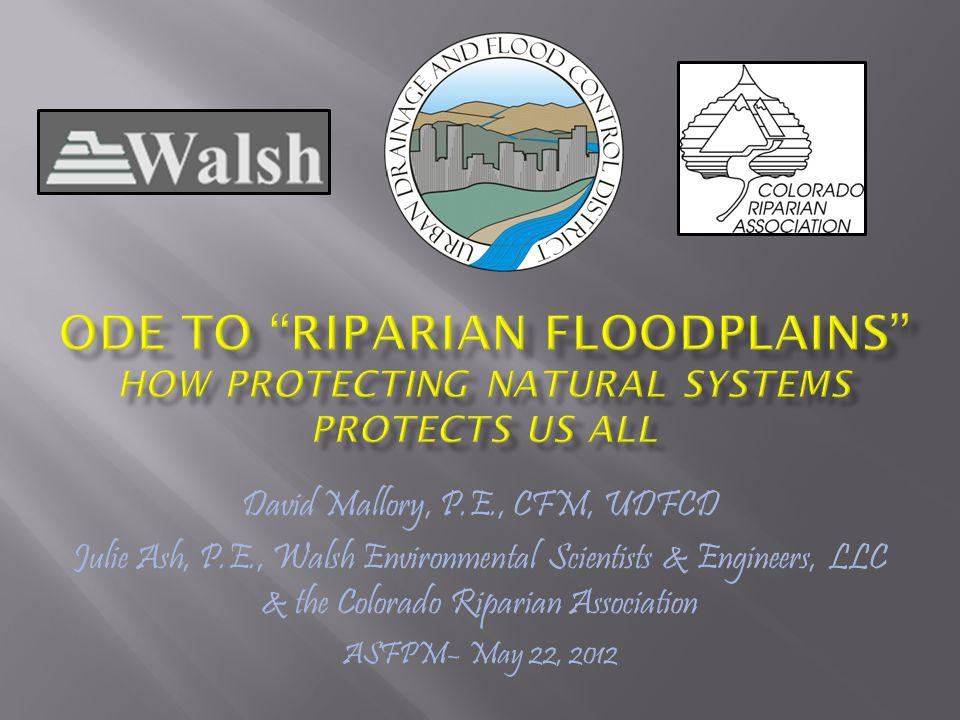 Natural processes for riparian floodplains …a floodplain can be broadly defined as a landscape feature that is periodically inundated by water from an adjacent river.