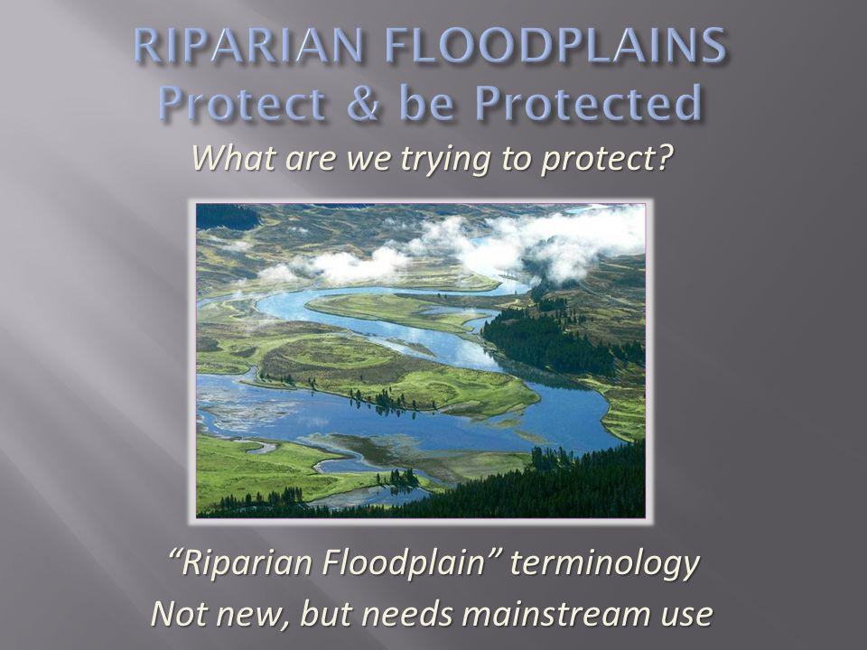 We had a good examples page on our web site where we tried to direct developers but with limited success We saw the opportunity to prepare a brochure which would market the floodplain as an asset to developers and communities that could be distributed early in the planning process, for instance, at a pre-application meeting