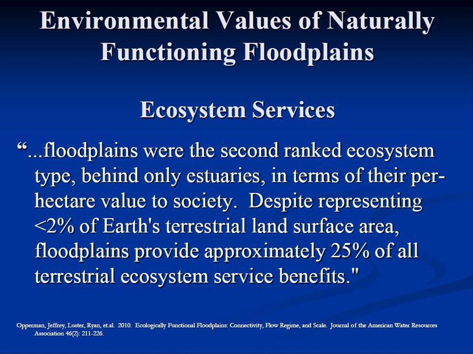 We are doing this to ourselves! Flood losses = Flood losses = f (riparian area losses)