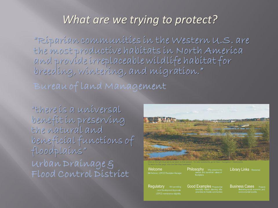 Anthropogenic impacts/ Land management choices