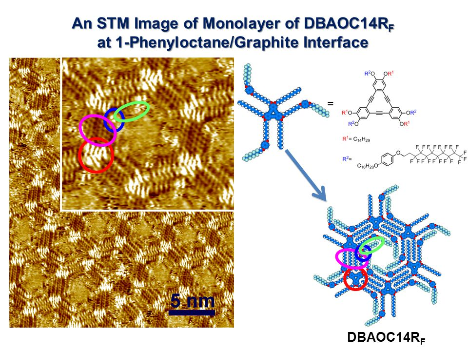 An STM Image of Monolayer of DBAOC14R F at 1-Phenyloctane/Graphite Interface DBAOC14R F =