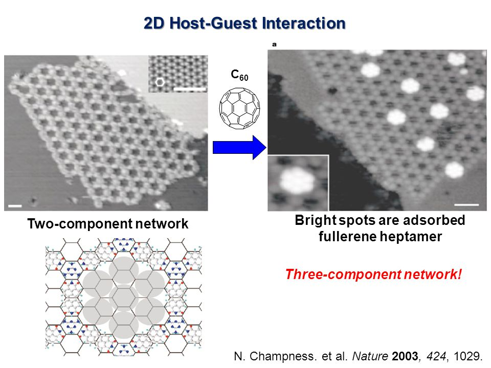 2D Host-Guest Interaction N. Champness. et al. Nature 2003, 424, 1029.