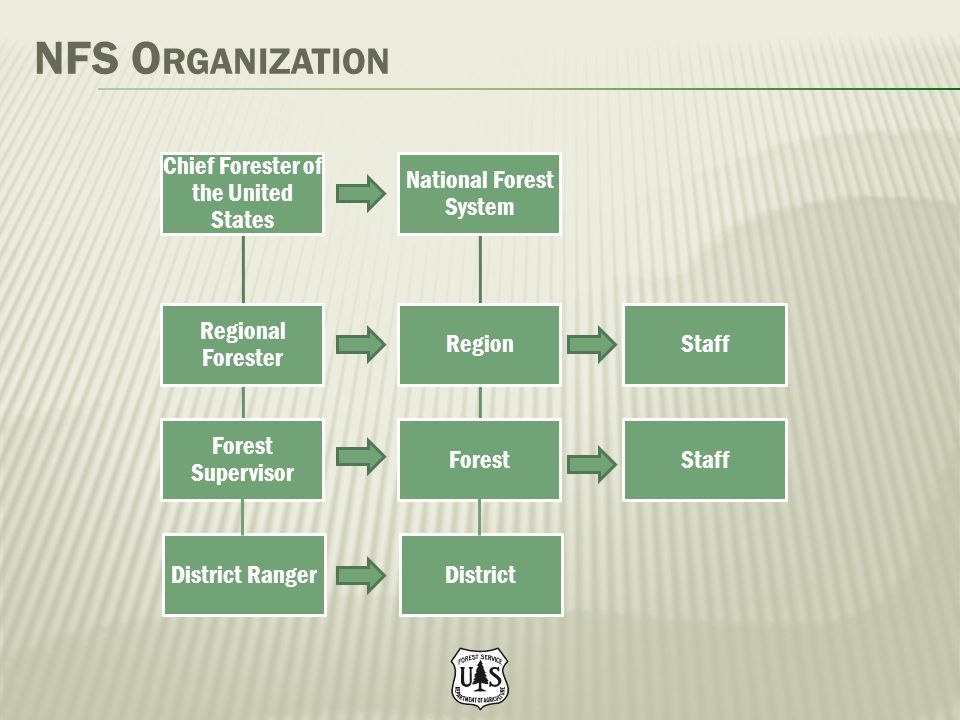 NFS O RGANIZATION Chief Forester of the United States Regional Forester Forest Supervisor District Ranger National Forest System Region Forest Distric