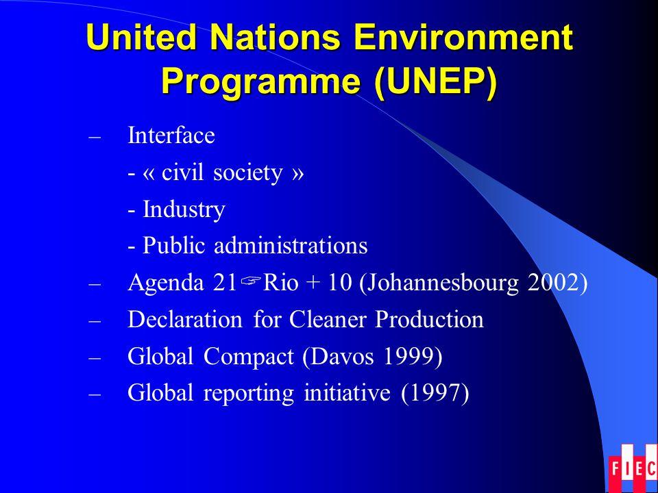 The European Approach Summit Meetings: Amsterdam (1997) Cardiff (1998) Helsinki (1999) Gothenburg (2001)