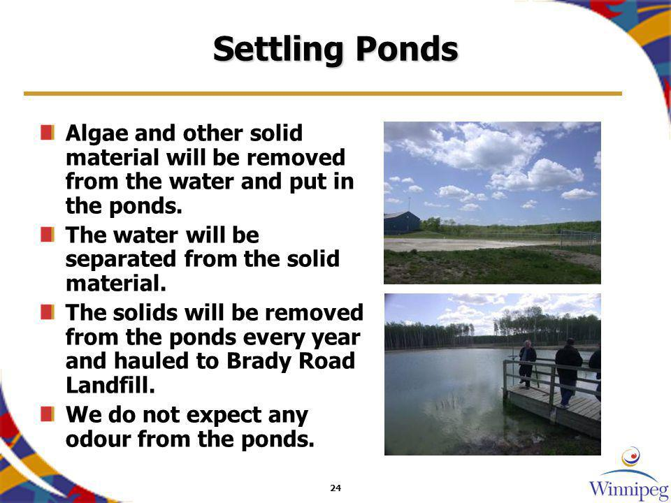 24 Settling Ponds Algae and other solid material will be removed from the water and put in the ponds. The water will be separated from the solid mater