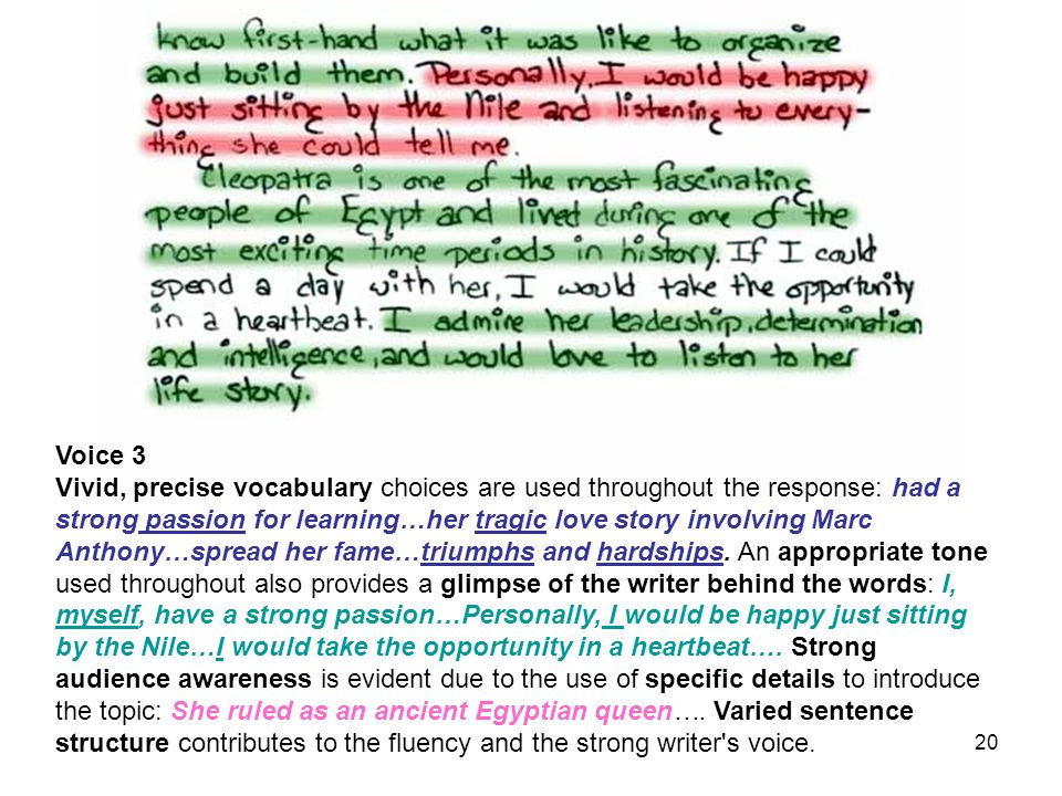 19 Word Choice Sentence Variety Awareness of Audience & Task Writer's Voice & Tone