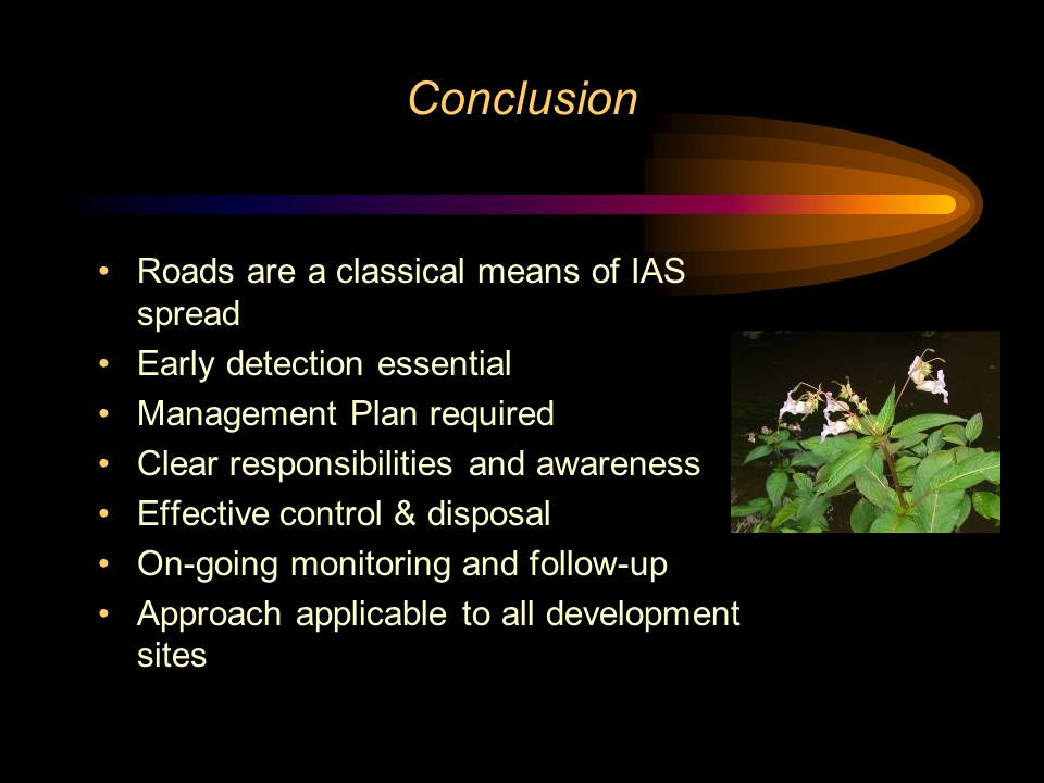 Conclusion Roads are a classical means of IAS spread Early detection essential Management Plan required Clear responsibilities and awareness Effective control & disposal On-going monitoring and follow-up Approach applicable to all development sites