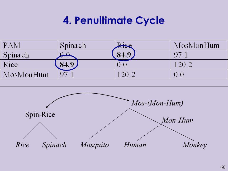 60 HumanMosquito Mon-Hum MonkeySpinachRice Mos-(Mon-Hum) Spin-Rice 4. Penultimate Cycle