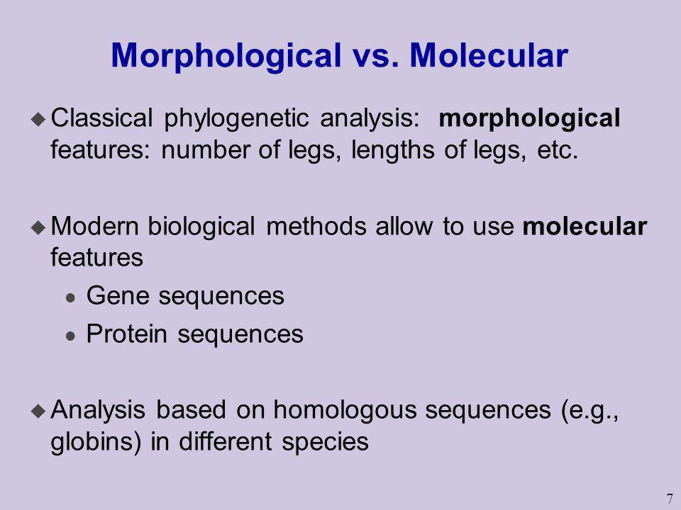 7 Morphological vs. Molecular u Classical phylogenetic analysis: morphological features: number of legs, lengths of legs, etc. u Modern biological met