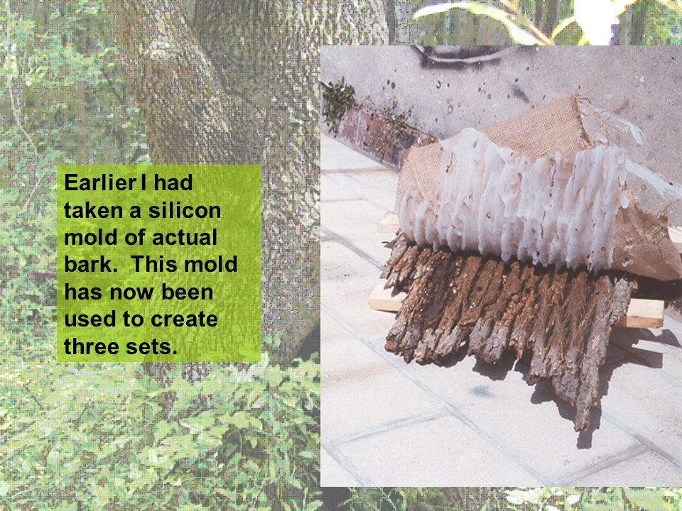 Earlier I had taken a silicon mold of actual bark.