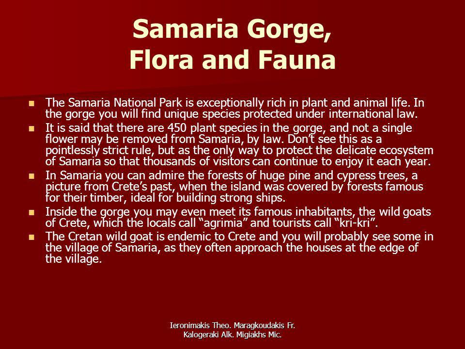 Ieronimakis Theo. Maragkoudakis Fr. Kalogeraki Alk. Migiakhs Mic. Samaria Gorge, Flora and Fauna The Samaria National Park is exceptionally rich in pl