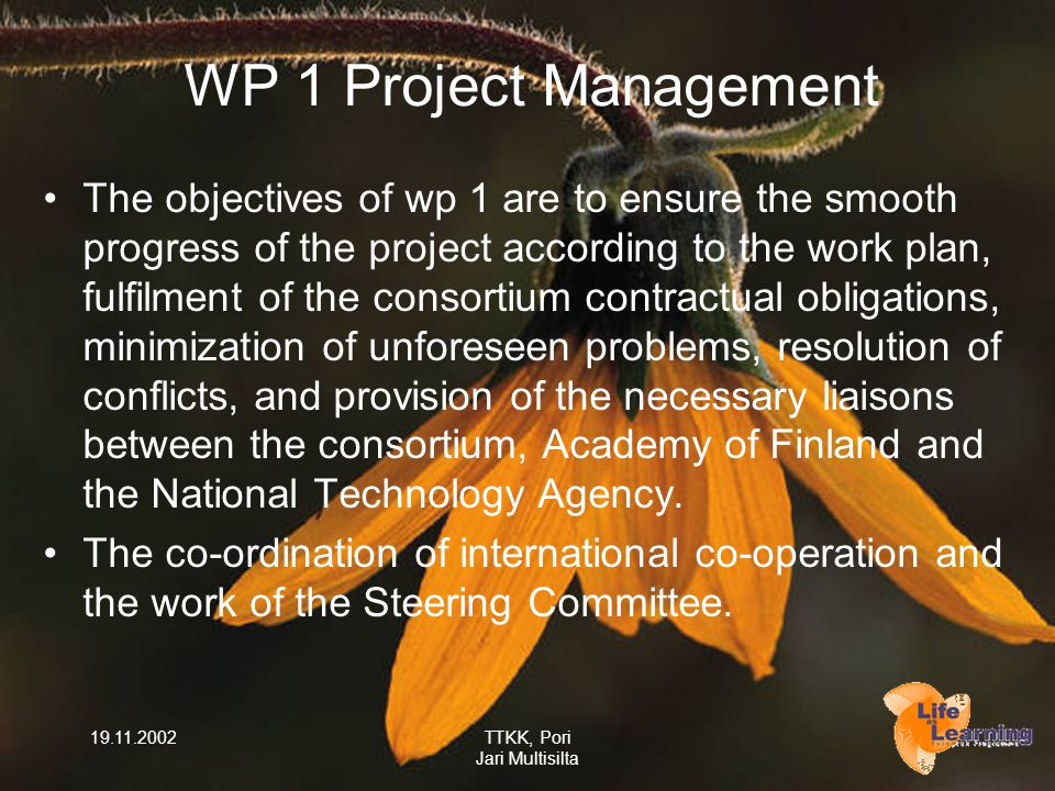 19.11.2002TTKK, Pori Jari Multisilta WP 1 Project Management The objectives of wp 1 are to ensure the smooth progress of the project according to the work plan, fulfilment of the consortium contractual obligations, minimization of unforeseen problems, resolution of conflicts, and provision of the necessary liaisons between the consortium, Academy of Finland and the National Technology Agency.