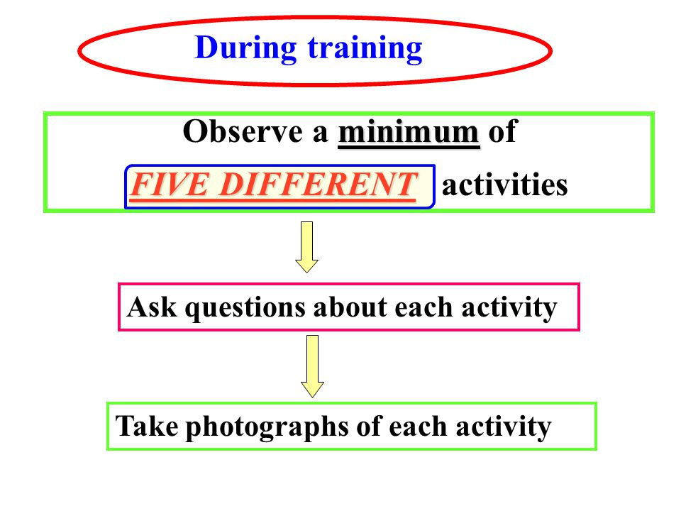 During training minimum Observe a minimum of FIVE DIFFERENT FIVE DIFFERENT activities Ask questions about each activity Take photographs of each activity