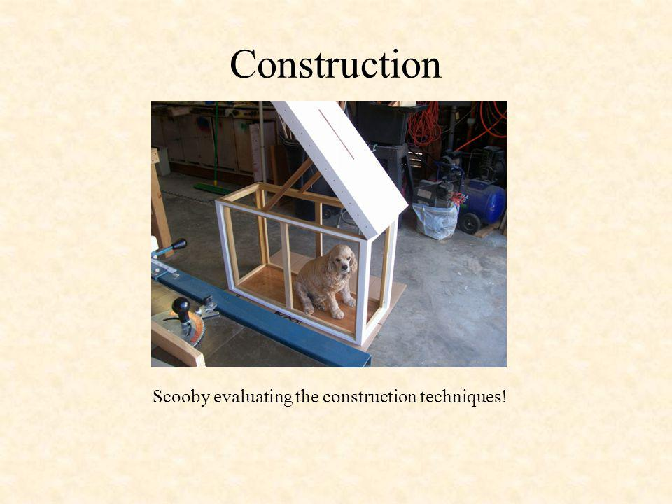 Construction Scooby evaluating the construction techniques!
