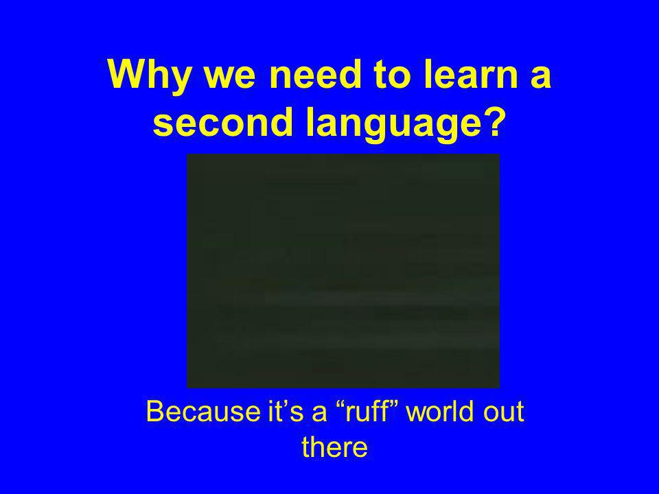 Why we need to learn a second language Because its a ruff world out there