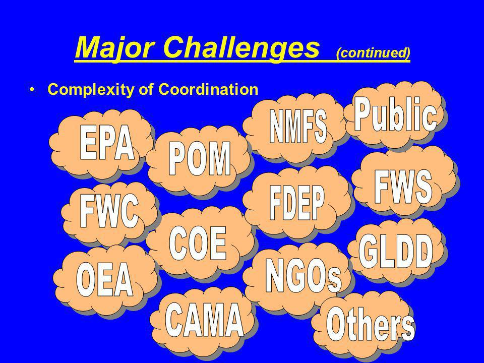 Major Challenges (continued) Complexity of Coordination