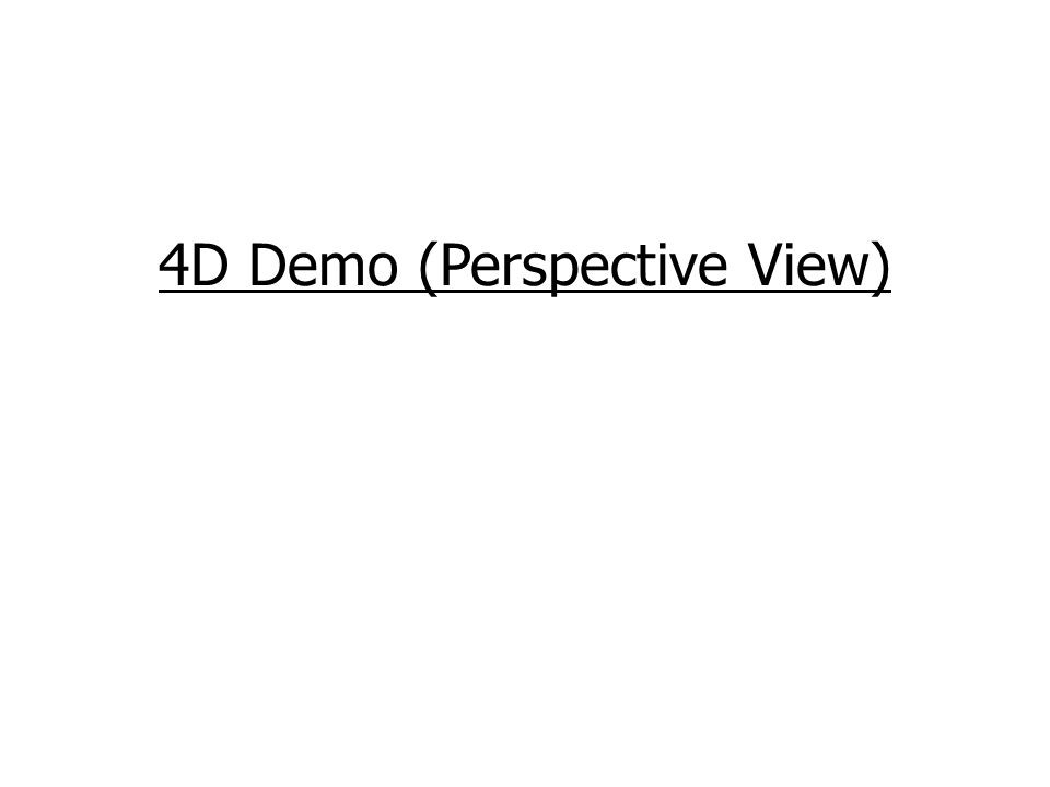 4D Demo (Perspective View)