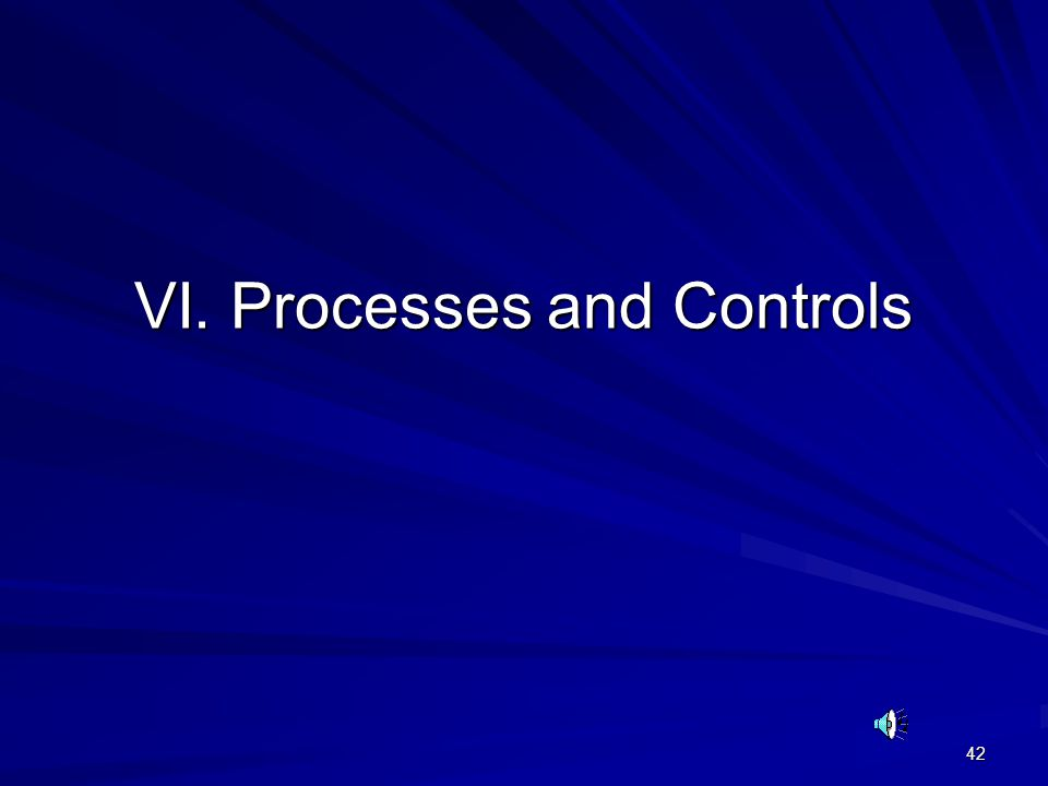 42 VI. Processes and Controls