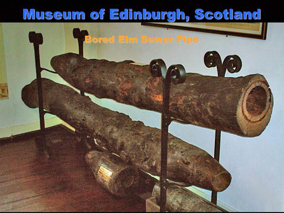4 Museum of Edinburgh, Scotland Bored Elm Sewer Pipe