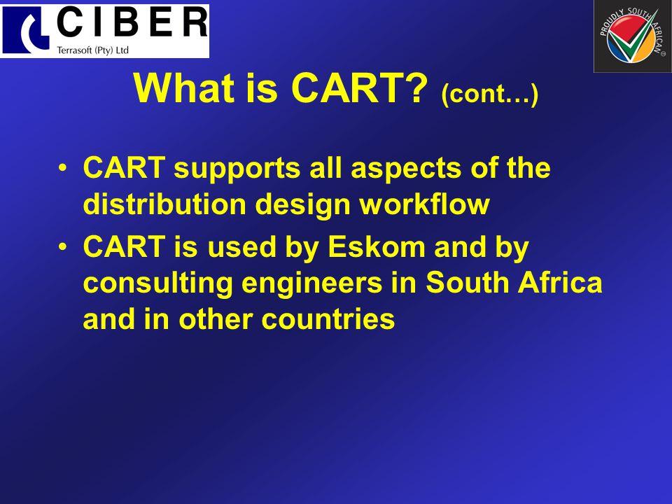 What is Ciber Terrasoft.