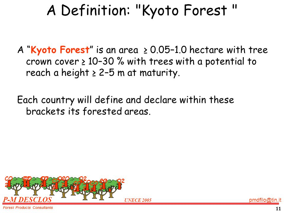 P-M DESCLOS UNECE 2005 pmdfilo@tin.it Forest Products Consultants 11 A Definition: Kyoto Forest A Kyoto Forest is an area 0.05–1.0 hectare with tree crown cover 10–30 % with trees with a potential to reach a height 2–5 m at maturity.