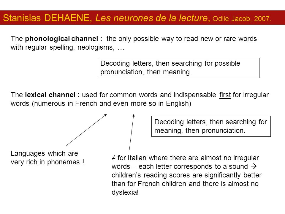 Stanislas DEHAENE, Les neurones de la lecture, Odile Jacob, 2007. The phonological channel : the only possible way to read new or rare words with regu