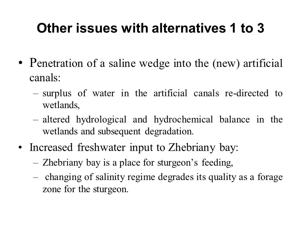 Other issues with alternatives 1 to 3 P enetration of a saline wedge into the (new) artificial canals: –surplus of water in the artificial canals re-d