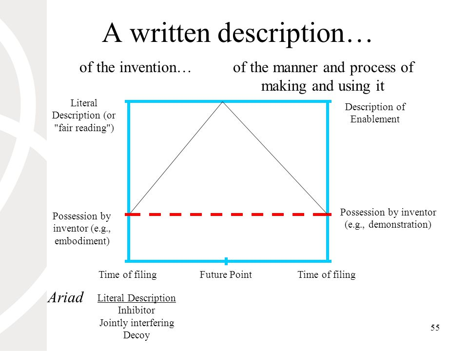 55 A written description… Literal Description (or fair reading ) Time of filing of the manner and process of making and using it of the invention… Possession by inventor (e.g., demonstration) Possession by inventor (e.g., embodiment) Description of Enablement Future Point Ariad Literal Description Inhibitor Jointly interfering Decoy